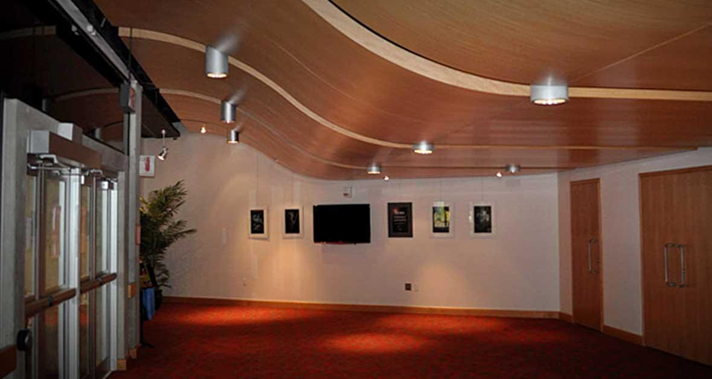 Entranceway wood veneer ceiling